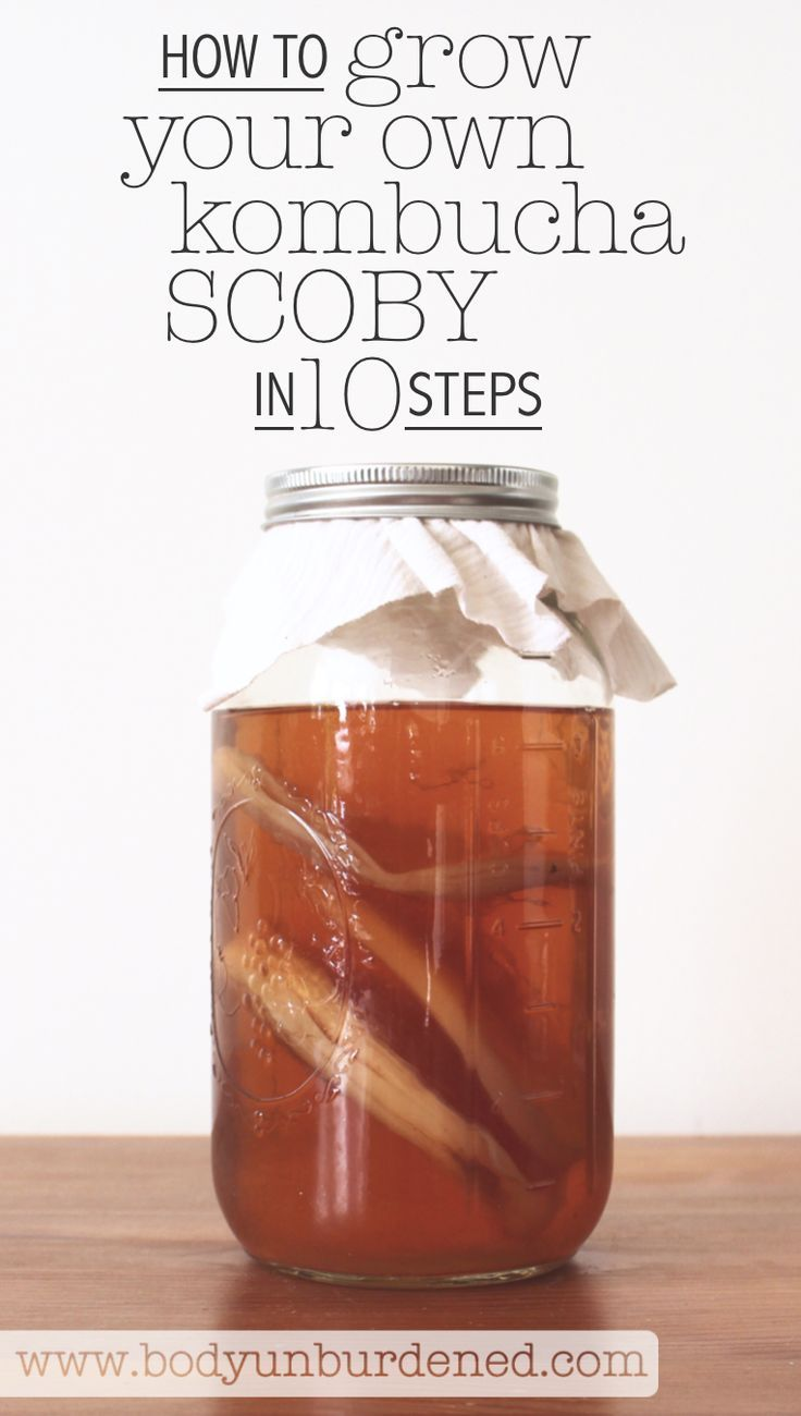 How to grow your own kombucha SCOBY in 10 easy steps! For more Kombucha recipe inspiration, check this link: http://www.foodmatters.com/recipe/kombucha-the-wonder-tea-you-should-be-drinking