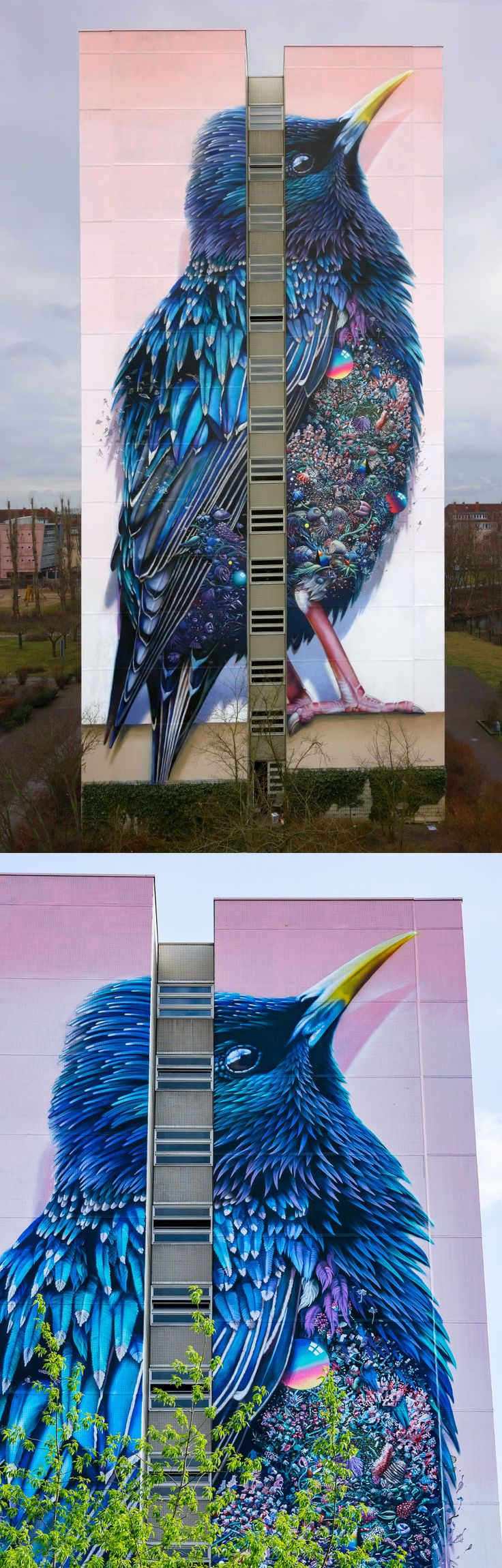 Giant Starling Mural in Berlin by Collin van der Sluijs and Super A