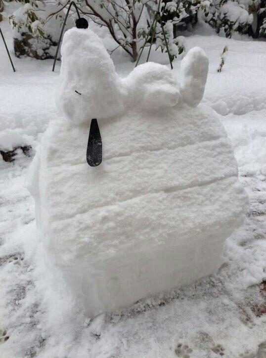 Téli kert8 | Forrás: buzzfeed.com