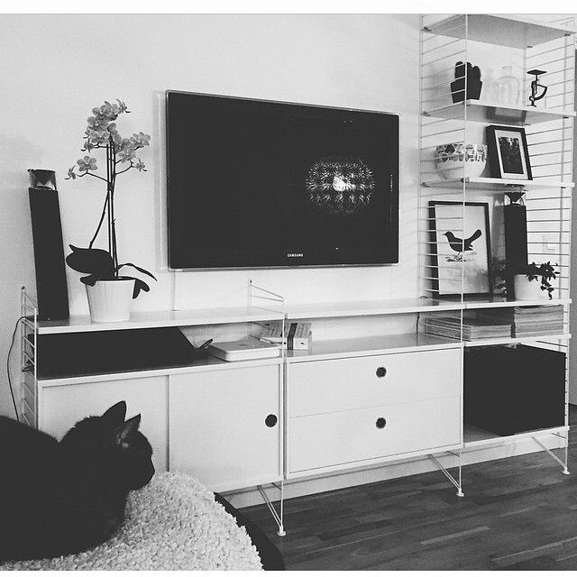 Black and white mood today and even the kitty match. Photo by @kauda #stringshelf #stringshelves #stringhylla #stringfurniture #sweden #modern #modernsince1949 #classic #interior #furniture