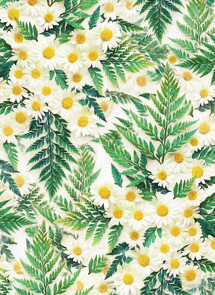Vintage Daisy Wallpaper Download