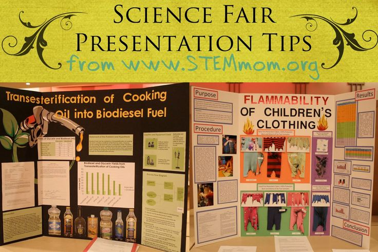 STEM Mom: 'Tis the Season for Science Fairs