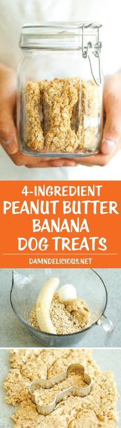 Peanut Butter Banana Dog Treats - All you need is 4 ingredients for these hypoallergenic treats! And the coconut oil makes these so HEALTHY for your pup!