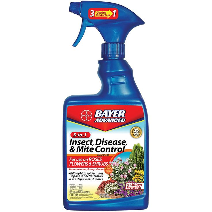 Bayer Advanced 701290 3-in-1 Insect Disease and Mite Control Ready-To-Use * Want to know more, click on the image.