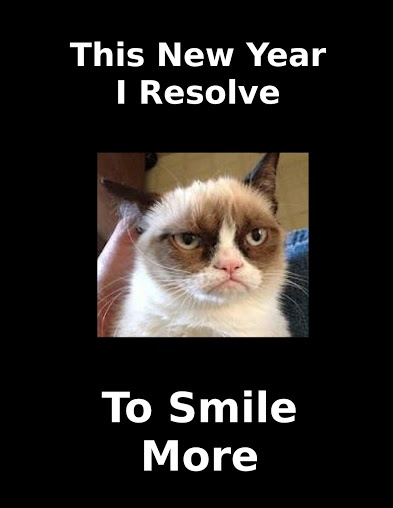 Grumpy Cat Meme Happy New Year Dft Coins Twitter Username And Password