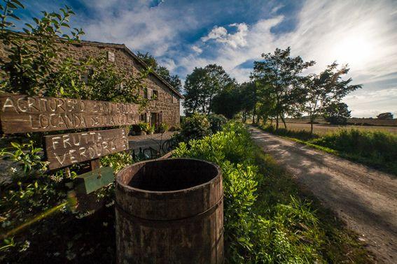 Sant'Egle è un #agriturismobio in Toscana http://www.negozibio.org/agriturismo-biologico-toscana-sant-egle/