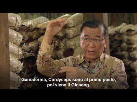 dr Lim (CEO di DXN)parla del Ganoderma e della Spirulina