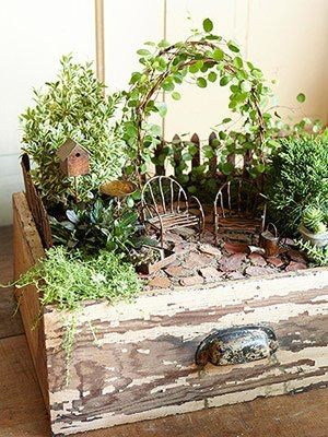 fairy garden in a drawer I have an old dresser going to the garbage! Now it will go drawer-less! I'm going to use the separate drawers for little herb gardens. Maybe I'll make a fairy one too. Great inspiration!