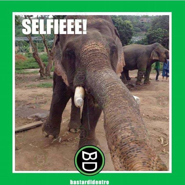 Selfieee!!!!