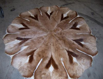 Recognize this fur rug? If you can prove this item belongs to you, please contact EPSpinterest@edmontonpolice.ca with specific details that identify the item, as well as any form of proof that it belongs to you. Only individuals providing specific information will be contacted.