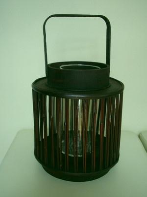 Lantern Bamboo