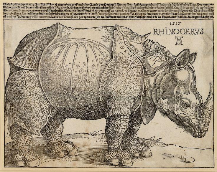 Albrecht Dürer | Rhinocerus | 1515 | © Albertina, Wien