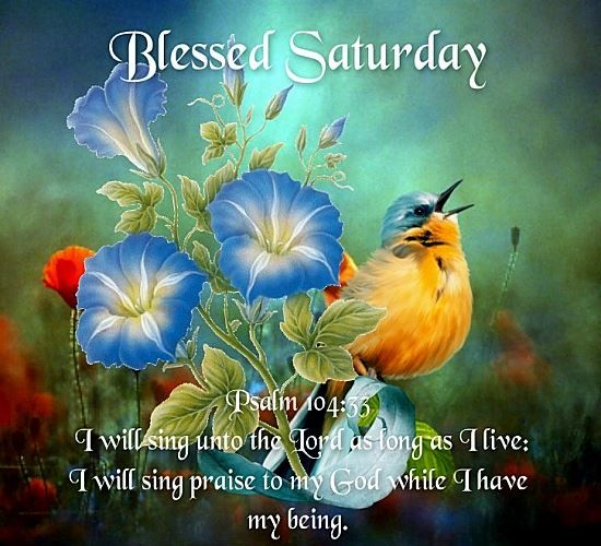 good morning have a wonderful weekend you and your
