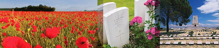 2015 ANZAC Day Guided Holidays