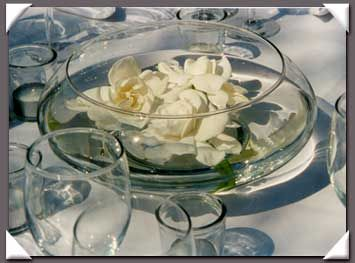 simple center for reception dinner, we can use the bulb vases that are going to hang from trees  Google Image Result for http://www.celebrationsflowers.com/images/TableArrangement6.jpg