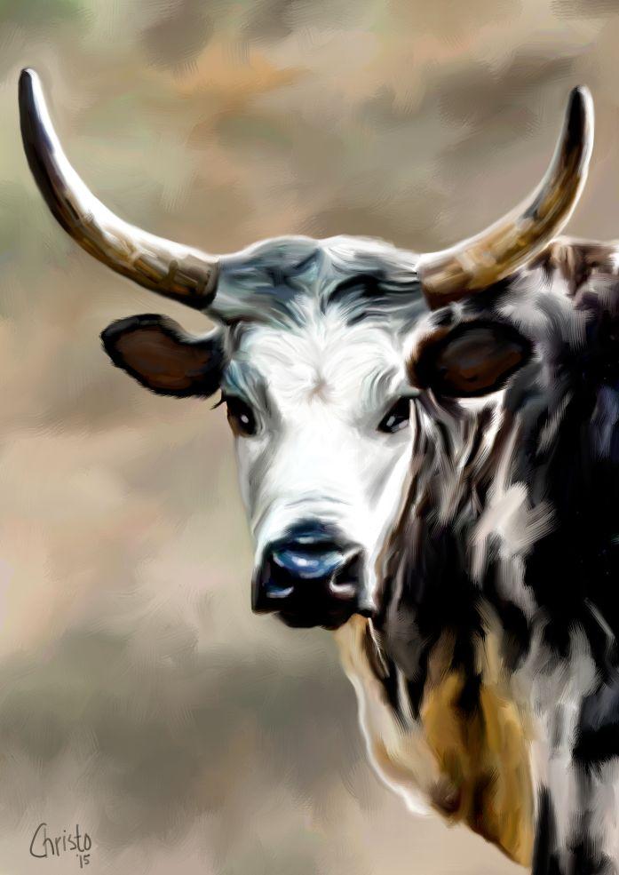 Nguni painting 1