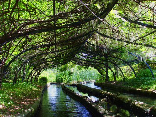the beautiful beautiful log ride through an enchanted forest at the Jardin d'Acclimatation in Paris, Bois de Bologne