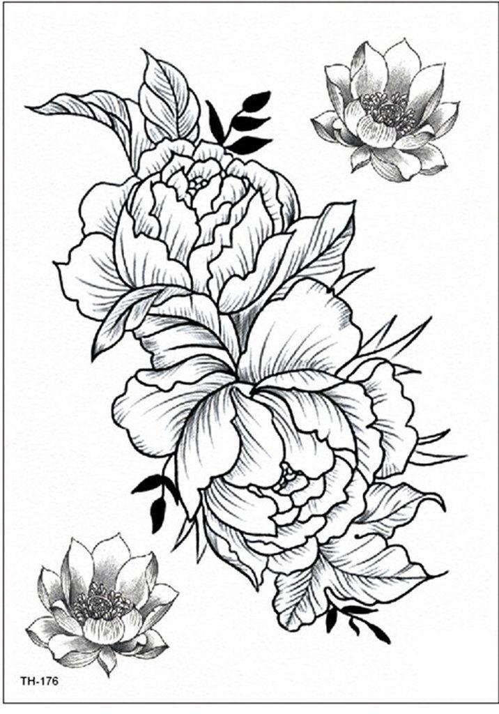 Garnet Delicate Black Peony Flower Outline Temporary Tattoo Black Peony Flower Outline Flower Tattoo Shoulder