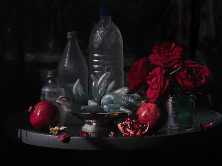 Fiona Pardington: A Beautiful Hesitation | City Gallery Wellington