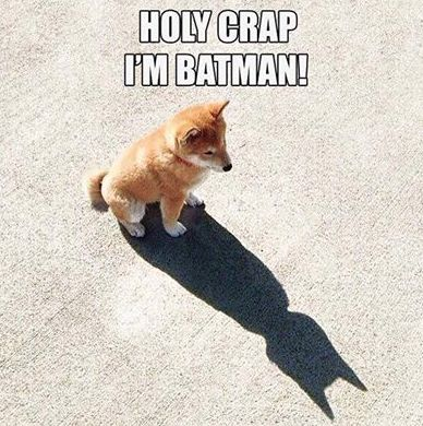 Holy Crap.... I'm Batman ! - LOL