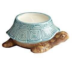 wish listBeautiful House, Turtles Candles, Air Turtles, Turtles Ii, Sea Air, Colors, Heart Turtles, Filling Candles, Sorta Turtles