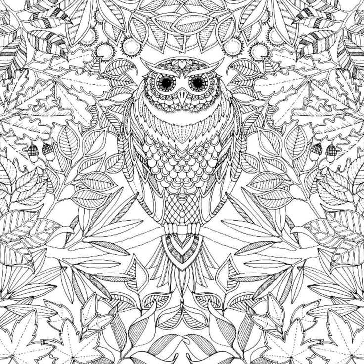 Secret Garden Johanna Basford Coloring Book