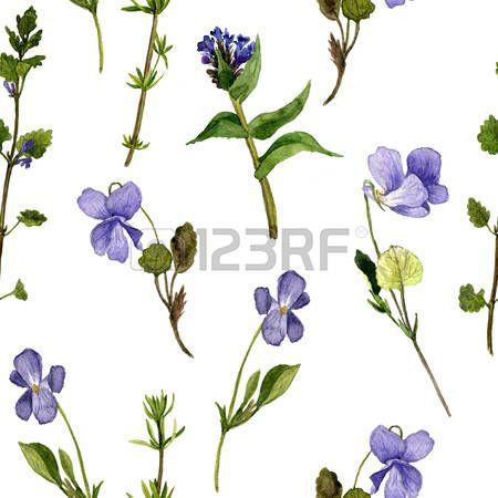 seamless floral avec dessin aquarelle fleurs sauvages, de fond avec des violettes, des plantes sauvages peintes, illustration botanique dans le style vintage, tir� par la main illustration photo