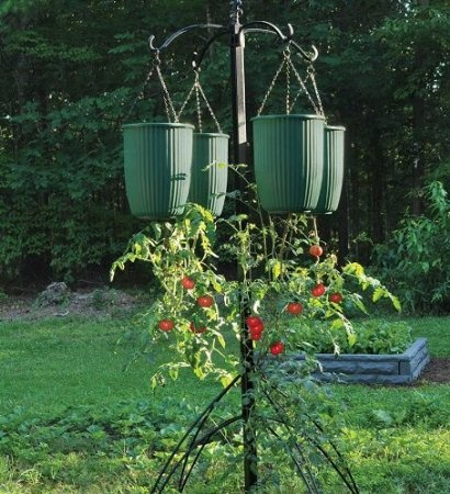 17 best images about hanging fruit vegetable container for Hanging vegetable garden ideas