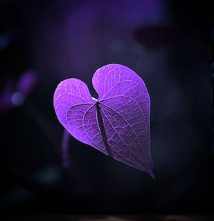 2 Nonverbal Communications Tips for Alzheimer's Caregivers #mindcrowd #tgen #alzheimers www.mindcrowd.org