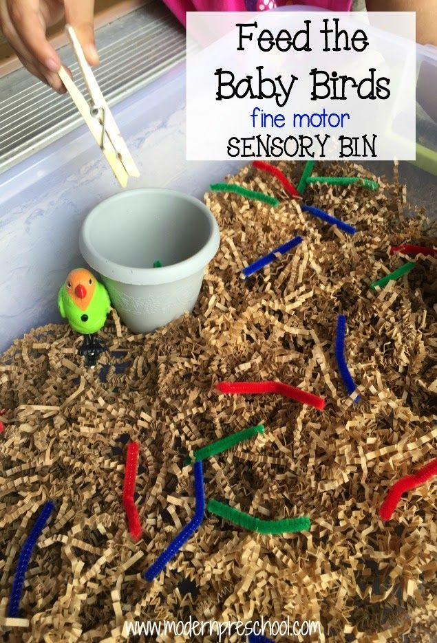 Baby Bird Eats the Worm! {fine motor sensory bin}