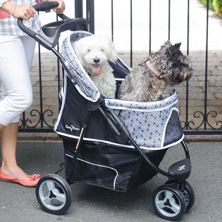 Promenade Pet Stroller Carrier Travel Folding Black/Onyx Circles Pattern If your pet can't keep up with you on walks, then the Promenade Pet Stroller will still let you Read  more http://dogpoundspot.com/dog-luxury-store-974/  Visit http://dogpoundspot.com for more dog review products