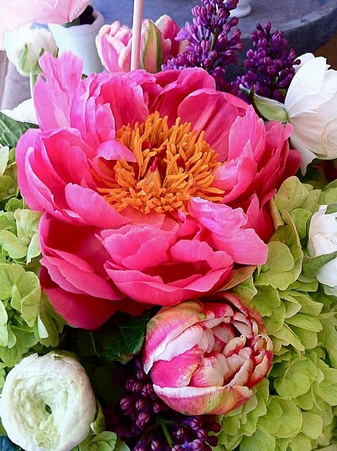 Stunning: Yellow Flowers, Flowers Arrangements Peonies, Pink Flowers, Favorite Flowers, Multi Colors, Bold Pink, Beautiful Love, Peonies Lilacs Hydrangeas, Pink Peonies