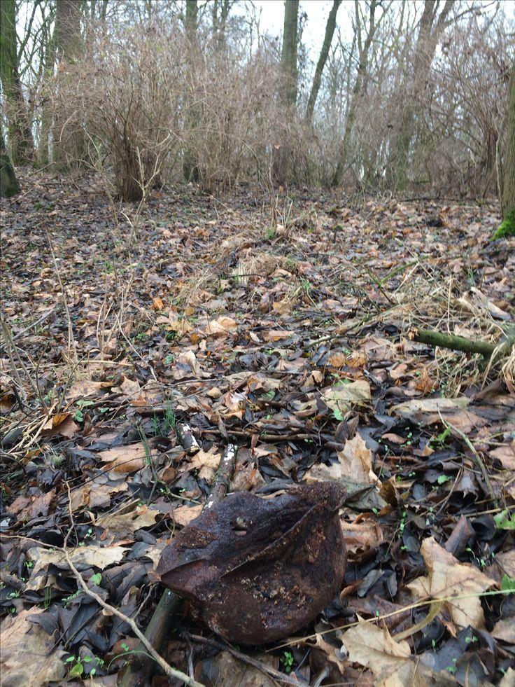 Deutscher Wehrmachtshelm liegt in der Nähe von Reitwein im Wald. Spuren der Schlacht um die Seelower Höhen.