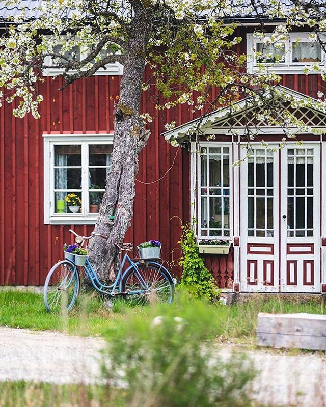 This image must be the epitome of #Swedish bliss!  by @kaptenhall #onlyinscandinavia #visitscandinavia
