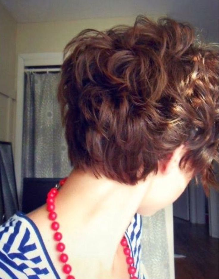 Back view of curly pixie