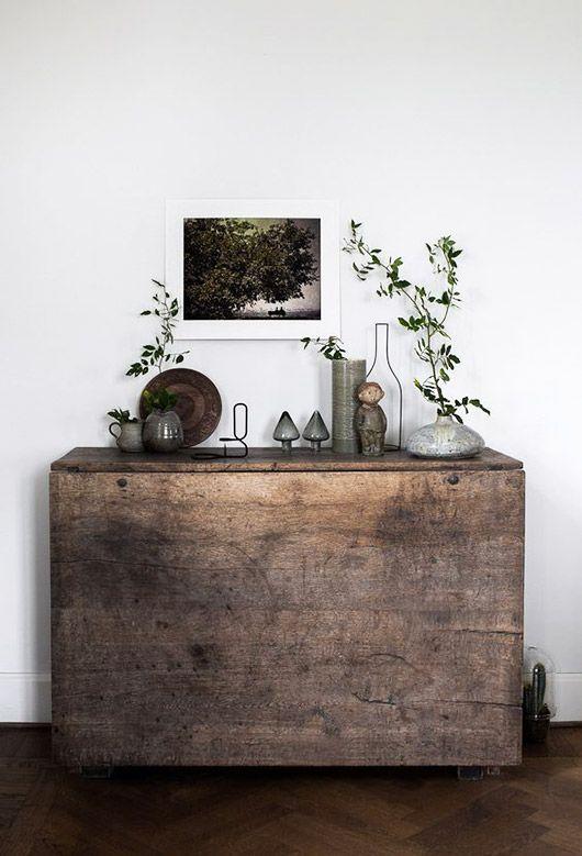decorative potted plants / sfgirlbybay
