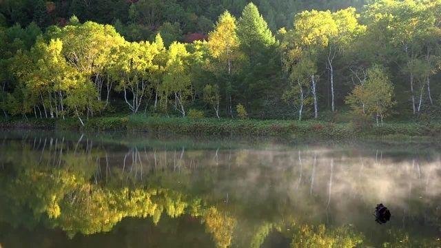 Autumn Shiga Kogen - Nagano - Japan