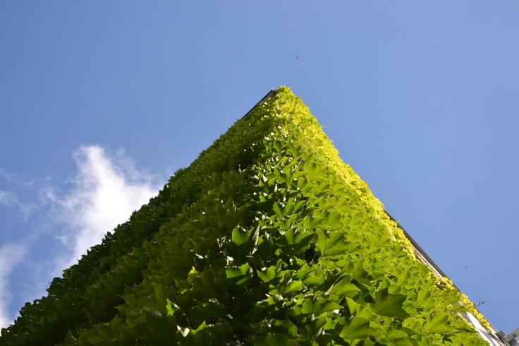 """Es gibt viele """"grüne Ecken"""" in #München ;-)  ©Foto: Sofia Delgado"""