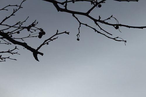O inverno londrino. #London