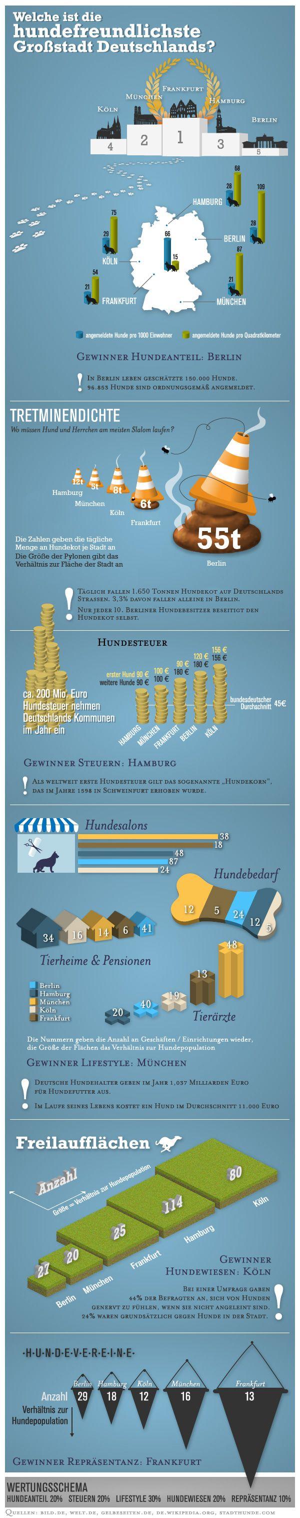Wer ist die hundefreundlichste Großstadt Deutschlands?  Sehr gut gestaltete und informative Grafik über die Lebensbedingungen für Hunde in deutschen Städten.
