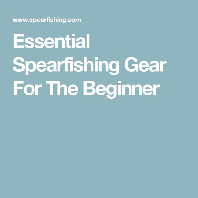 Essential Spearfishing Gear For The Beginner