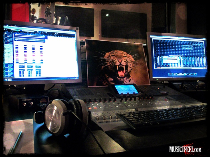 There is an animal in the studio... hear me roar! In this album, the animal within me is being unleashed. www.MusicIFEEL.com: Animal