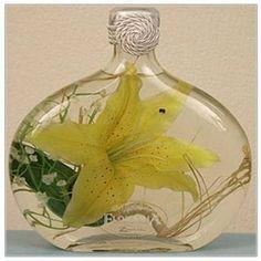 Сохранение цветов в глицерине