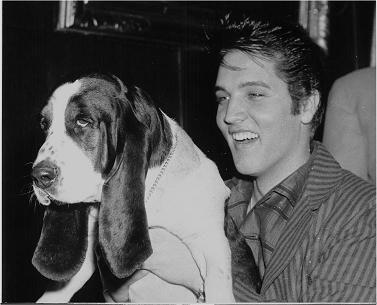 Elvis with his Hound Dog, Johnny Walker Sherlock