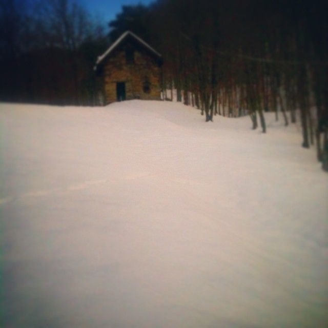 #beiguashire #neve #winter #bosco#casanelbosco #finalmente