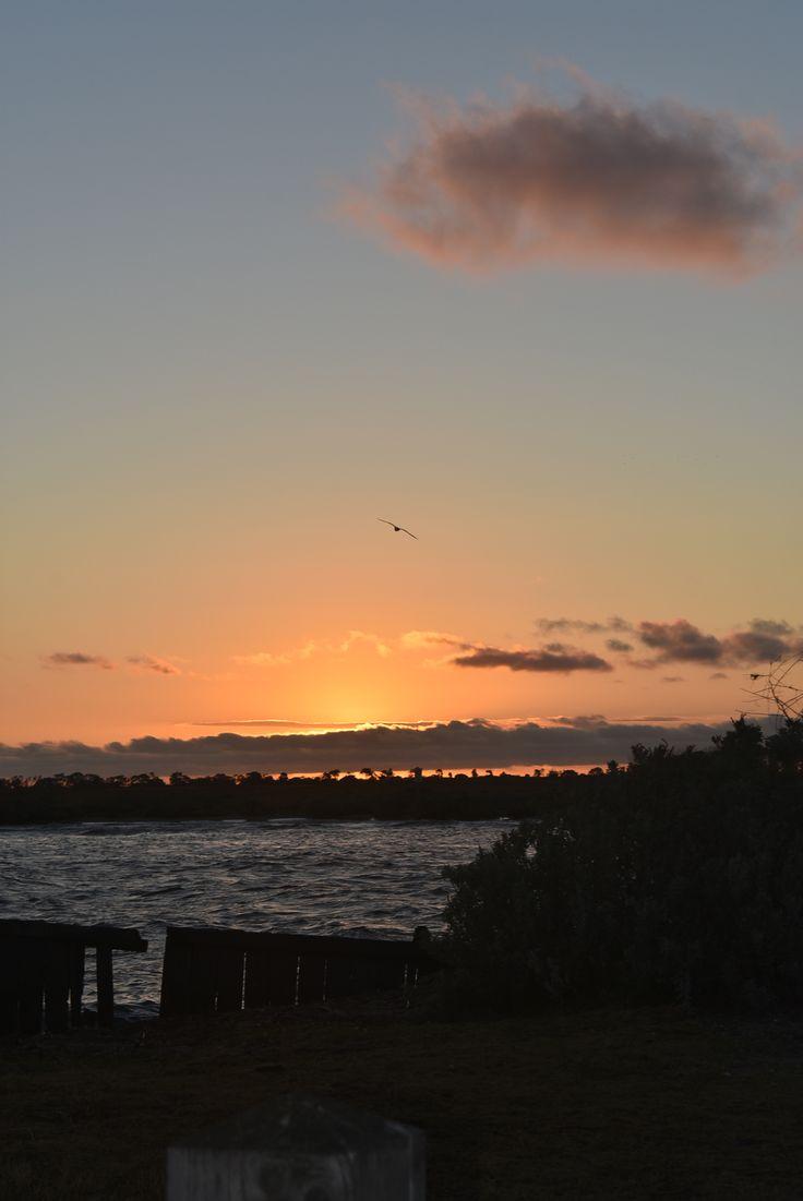 L1M1AP2 Sunset Portrait, standing, ISO 200, auto mode, WB auto, Image JPEG,  Used Nikon D3400