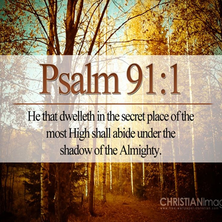 Psalm 91King James Version (KJV):  91 He that dwelleth in the secret place of the most High shall abide under the shadow of the Almighty.