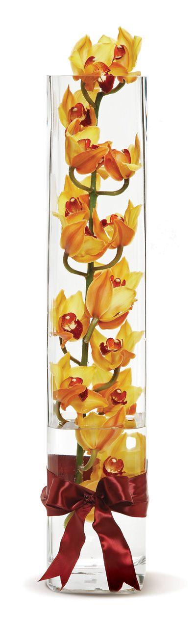 Long Steam Orange Cymbidium Orchids Arrangement || Flower Delivery San Diego