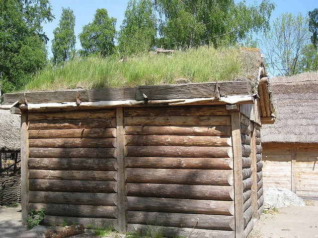 how to build a sod roof