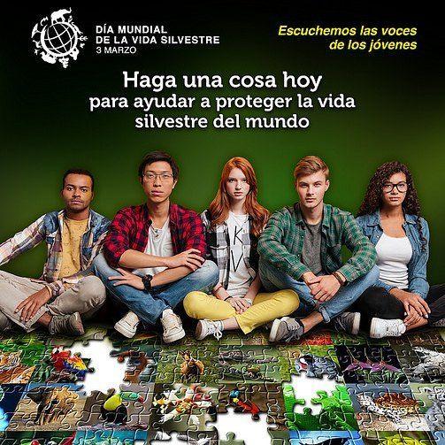 Como ya sabes el 3 de marzo celebramos el Día Mundial de la Vida Silvestre. Ahora hablemos un poquito de eso.  Esta es una iniciativa de las Naciones Unidas que en Asamblea General del 20 de diciembre de 2013 en su 68 período de sesiones decidió proclamar el 3 de marzo el día de mañana adopción de la Convención Internacional de Especies Amenazadas de Fauna y Flora Silvestres (CITES) como el Día Mundial de la Vida Silvestre a fin de celebrar y dar a conocer la biodiversidad de todo el mundo…